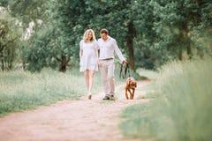 Conversa nova do marido e da esposa o momento de andar no parque imagens de stock royalty free