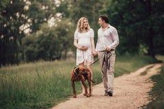 Conversa nova do marido e da esposa o momento de andar no parque fotografia de stock royalty free