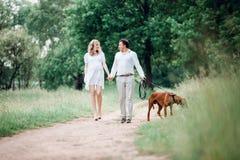 Conversa nova do marido e da esposa o momento de andar no parque imagem de stock royalty free