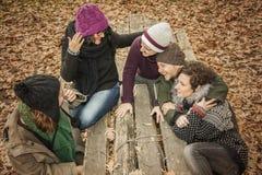 Conversation d'amis en parc complètement des feuilles Images stock