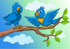 Conversation two blue birds Stock Images