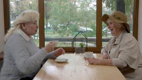 Conversation of two senior women. stock footage