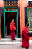 Conversations. Two Buddhist student monks are in relax conversations at Rumtek Monastery, Sikkim, India Royalty Free Stock Image