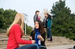 Conversazione degli studenti di college Fotografia Stock