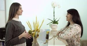 Conversazione felice fra assistenza ed il cliente alla reception video d archivio