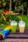 Conversazione verde & gialla Fotografia Stock Libera da Diritti