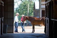 converse horizontal ranchers Στοκ φωτογραφία με δικαίωμα ελεύθερης χρήσης