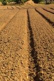 Convert agricultural land Stock Photos