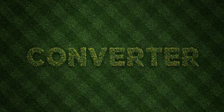 CONVERTER - fresh Grass letters with flowers and dandelions - 3D rendered royalty free stock image Royalty Free Stock Photos
