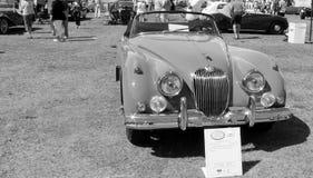 Convertible clásico delantero del xk de la punta Foto de archivo
