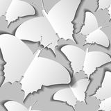 Convex butterflies Stock Photography