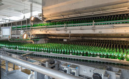 Conveyer belt with beer bottles in a brewery Royalty Free Stock Images