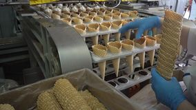 Conveyor automatic lines for the production of ice cream stock video footage