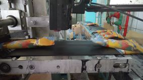 The conveyor automatic lines for the production of ice cream stock video footage