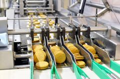 Conveyor belt with biscuits in a food factory - machinery equipm royalty free stock photography