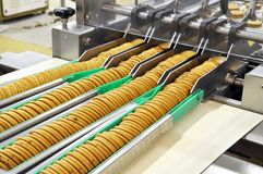 Conveyor belt with biscuits in a food factory - machinery equipm. Ent stock photo
