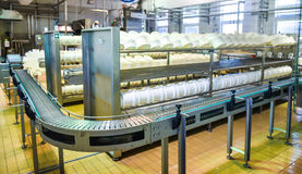 Conveyor belt in a cheese factory Stock Images