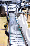 Conveyor belt in a cheese factory Royalty Free Stock Photo
