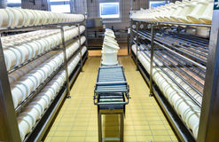 Conveyor belt in a cheese factory Royalty Free Stock Photos