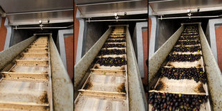 Conveyor belt in a mill Stock Images