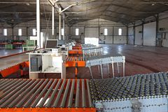 Conveyor Belt. Sorting Cargo and Delivery Distribution Warehouse stock images