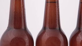 Conveyor Bottles of beer with drops isolated on white background stock video