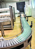 Conveyor in a cheese factory Stock Image