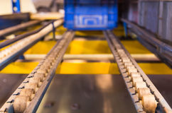 Conveyor rollers transport system Royalty Free Stock Photos