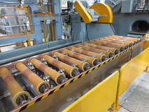 Conveyor for transporting the plant. Stock Image