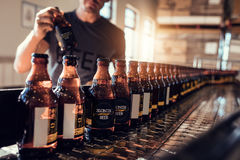 Free Conveyor With Beer Bottles Moving In Brewery Factory Stock Images - 95275504