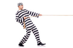 Convict criminal Royalty Free Stock Images