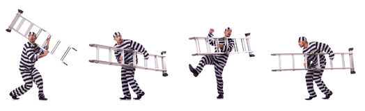 The convict criminal in striped uniform Stock Images
