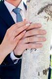Convidados que jogam confetes sobre noivos At Wedding foto de stock