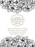 Convite botânico romântico Foto de Stock