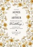 Convite do casamento Camomila bonita das flores Cartão do vintage Quadro Gravura do desenho Ilustração do victorian do vetor Imagem de Stock