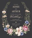 Convite do casamento Malva bonita do hibiscus de Rosa da camomila das flores Cartão do vintage Quadro Gravura do desenho ilustração stock