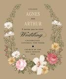 Convite do casamento Malva bonita do hibiscus de Rosa da camomila das flores Cartão do vintage Quadro Gravura do desenho Fotos de Stock