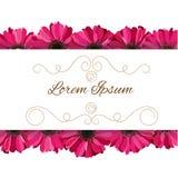 Convite do vetor com as flores cor-de-rosa do gerbera Imagens de Stock