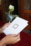 Convites #3 Imagens de Stock