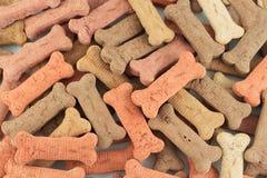 Convites del perro foto de archivo libre de regalías