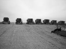 Convoy of tractors. Going out to harvest in Saskatchewan Stock Photo