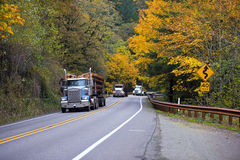 Convoy of trucks on the beautiful autumn highway Stock Image