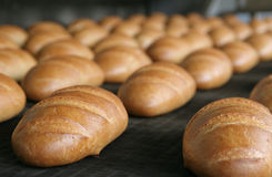 Convoyeur de pain blanc Image libre de droits
