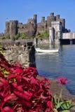 Conwy城堡在威尔士,英国, Walesh系列防御 库存图片