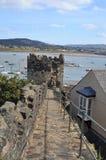 Conwy堡垒,北部威尔士墙壁  免版税库存图片