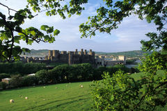 Conwy castle Stock Images