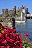 Conwy Castle in Wales, United Kingdom, series of Walesh castles Stock Image
