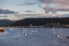 CONWY ESTUARY, CONWY/WALES - OCTOBER 6 : View of the Conwy Estua Royalty Free Stock Photo
