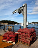 Conwy Quayside. With bags of mussels on the quay  North Wales Royalty Free Stock Image