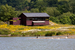 Conwy RSPB hides Royalty Free Stock Photography